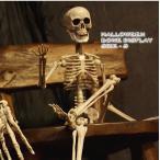 ハロウィン ボーンディスプレイ ガイコツクン 48cm Sサイズ 1411 ホラー がいこつ スケルトン 骨 飾り 店舗装飾 お化け イベント パーティ