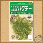 Yahoo!菜園ライフ新製品!サカタのタネ サラサラ細葉パクチー ハーブ 種(メール便対応)