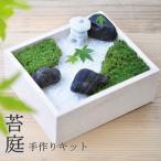苔庭園手作りキット 苔盆 (KOKEBON)