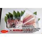 【水産物応援商品】みやび鯛 お刺身用ロインセット(冷凍)お頭付き 1尾分(商品コードSU00020)