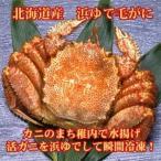 毛がに 北海道産 浜ゆで(冷凍)500g×1尾