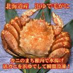 毛がに 北海道産 浜ゆで(冷凍)650g×1尾