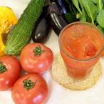 ショッピングトマトジュース 酵素ドリンク やさい生酵素・トマト ジップパック100g