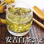 緑茶 安吉白茶20g 中国緑茶