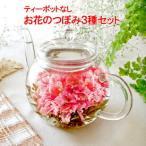 お花のつぼみ3種 工芸茶 カーネーション カレンデュラ 千日紅 センニチコウ 送料無料