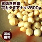 マカダミアナッツ500g 送料無料 無塩