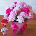 母の日2021 ソープフラワー カーネーション花鉢 鉢植え 鉢花 枯れない 造花 まだ間に合う 母の日プレゼント 花 ギフト ピンク レッド アレンジメント