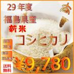 お米30kg 28年度福島県産太三郎米コシヒカリ玄米30kg