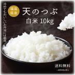 お米10kg 28年度福島県産 太三郎米天のつぶ白米10kg