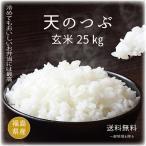 28年度福島県産天のつぶ玄米30kg又は白米27kg