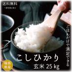 米 お米  25kg コシヒカリ玄米25kg又は白米22.5kg  令和2年度福島県産 特価