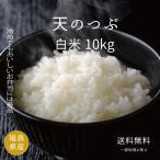 お米30kg 【期間限定】28年度福島県産太三郎米天のつぶ白米27kg