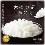 お米 画像