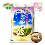 お米 こしいぶき 5kg 平成28年 新潟産 玄米
