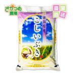 お米 こしいぶき 5kg 平成28年 新潟産 白米