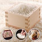 もち米 こがねもち 1kg 平成28年 新潟産 精米 量り売り