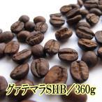 コーヒー豆 コーヒー 送料無料 お試し 珈琲  レギュラーコーヒー グァテマラSHB・400gポッキリセット