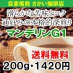 マンデリン コーヒー豆 コーヒー お試し 【送料無料】スマトラ・マンデリンG1(200g)