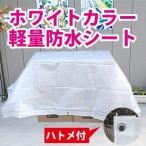 【サイズ、種類豊富】ホワイトカラー軽量防水シート約3.6x5.4m(2間x3間) (#2000ブルーシートの白)白色