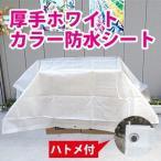 【サイズ、種類豊富】厚手ホワイトカラー防水シート約1.7x2.6m(1間x1.5間) (#3000ブルーシートのナチュラルカラー)白色