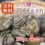 ボイル殻付あさり 砂抜き済み 250gx4パック 濃厚で美味しい 温めるだけ 貝 アサリ あさり 送料無料