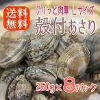 ボイル殻付あさり 砂抜き済み 250gx8パック 濃厚で美味しい 温めるだけ 貝 アサリ あさり 送料無料