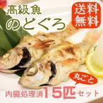 海鮮 のどぐろ 話題 高級魚 1尾80-100g ウロコ・内臓処理済み 送料無料