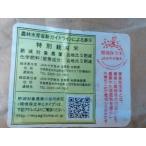 *特別栽培/令和2年産宮城県ササニシキ精白米4kg/環境保全米/登米市産
