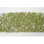 ブナの枝葉(HO)-萌える春 :ミニネイチャー 素材 ノンスケール 920-21