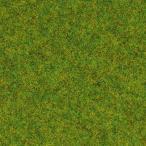 グラスマスター用繊維系素材 スタティックグラス 1.5mm 春の草原 20g :ノッホ 素材 ノンスケール 8200