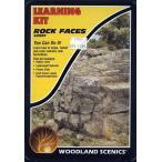 入門素材セット 岩肌 :ウッドランド 素材 ノンス