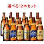国産プレミアムビール 中瓶 500ml 選べる12本セット ビール 送料無料 (北海道・沖縄は送料1000円、クール便は+700円)