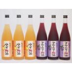 果物梅酒セット ブルーベリー梅酒×ゆず梅酒 中野BC(和歌山県)720ml×6本