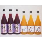 果物梅酒セット ブルーベリー梅酒×完熟みかん梅酒 中野BC(和歌山県)720ml×6本