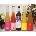 果物梅酒リキュールセット(ゆず梅酒 もも梅酒 あまおう梅酒 りんご梅酒 ブルーベリー梅酒)500ml×5本