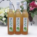 6本セット 完熟梅の味わいと日本酒のうまみをたっぷりの梅リキュール うめとろ500ml×6本 13%奥の松酒造(福島県)