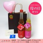 バレンタイン 果物梅酒2本セット りんご梅酒 もも梅酒 (福岡県)合計720ml×2本 メッセージカード ハート風船 ミニチョコ