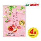 (お試しプライス)南信州菓子工房 ひとくちいちご(ドライフルーツ)20g × 4袋(ゆうパケット送料無料)