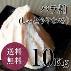 しっとりやわめの上質な純米酒粕 バラ粕しっとりめ 10kg 甘酒 粕汁 奈良漬