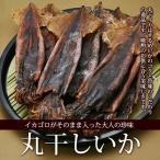 国産 丸干しイカ (120g) 燻製 イカゴロ おつまみ 乾燥珍味 するめいか