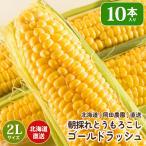 北海道産 朝採れとうもろこし ゴールドラッシュ(一番果) L〜2Lサイズ×10本セット