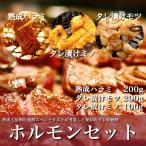 焼肉ホルモンセット 熟成肉 ハラミ モツ 上ミノ 贈答 パーティ