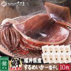 バーベキューセット 海鮮 するめいか 干物 10枚 無添加 【冷凍便】