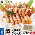 蝦子 - ガラエビ500g 約40尾 越前産がらえび BBQ 海鮮 バーベキュー