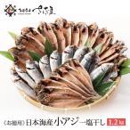 鰺魚 - 日本海産 小アジ 干物 1.2kg(21〜30尾)