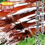 するめいか4杯(約1kg)日本海産スルメイカ