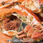 せいこがに 越前 松葉 せいこ蟹 5,000円コース(4つの規格からご選択ください)せこがに (冷蔵便)