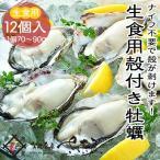 生食用カキ 12個入り 殻付き牡蠣(冷凍)かきナイフ不要