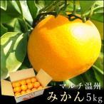 紀州熊野 福原農園 マルチ温州みかん5kg  /  お歳暮 産地直送 フルーツ お取り寄せ ミカン