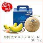 静岡産マスクメロン1玉(約1.3kg)|お歳暮ギフト 御歳暮 フルーツ 果物 贈り物に人気